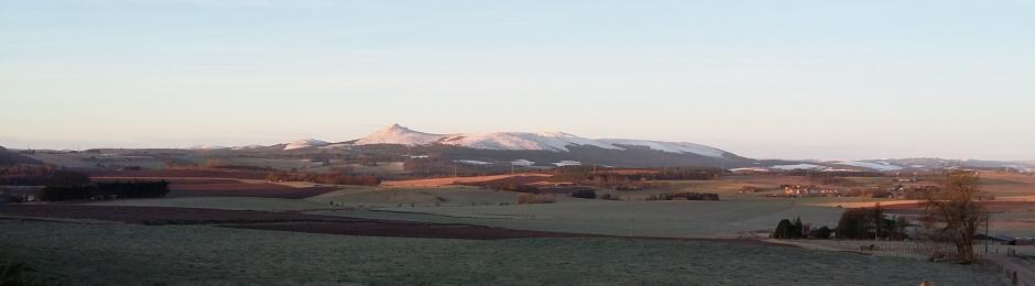 Bennachie View